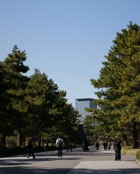 東御苑-02.JPG