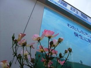 蒲南茶荘-01.jpg